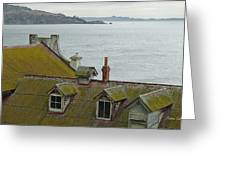 Alcatraz View Greeting Card by Suzanne Gaff