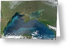Algal Blooms In The Black Sea Greeting Card by NASA / Science Source
