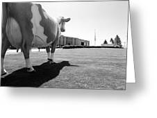 All We Have We Owe To Udders Greeting Card by Jan Faul