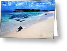 Alligator Rock North Shore Oahu Greeting Card by Thomas R Fletcher