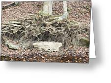 Altar to Nature Greeting Card by James Collier