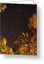 Amateur Astronomy Greeting Card by Detlev Van Ravenswaay