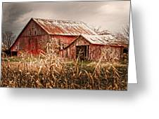America's Small Farm Greeting Card by Randall Branham