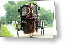 Amish Buggy On The Road Greeting Card by Emanuel Tanjala