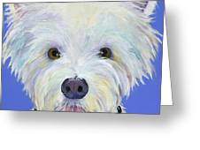 Amos Greeting Card by Pat Saunders-White