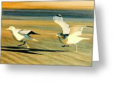 And Away We Go Greeting Card by Frank Dalton