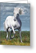 Andalusian Freedom Greeting Card by Suni Roveto