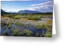Annie Lake In Yukon Greeting Card by Charline Xia