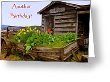 Another Birthday Antiques Greeting Card by Cindy Wright