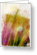 Another Field Of Dreams Greeting Card by Judi Bagwell