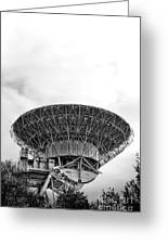 Antenna   Greeting Card by Olivier Le Queinec