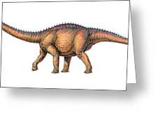 Apatosaurus Dinosaur Greeting Card by Joe Tucciarone