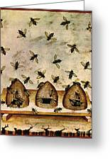 Apiculture-beekeeping-14th Century Greeting Card by Science Source