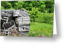 Apple Crates Greeting Card by JC Findley