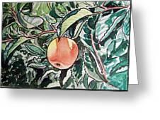 Apple Tree Sketchbook Project Down My Street Greeting Card by Irina Sztukowski