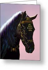 Arab Horse Greeting Card by MGL Studio - Chris Hiett
