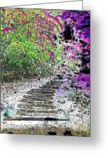 Arbor Pathway Greeting Card by Tim Allen