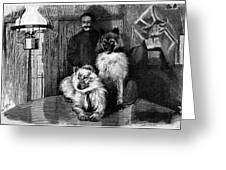 Arctic Explorer And Dogs, 19th Century Greeting Card by