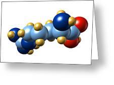 Arginine, Molecular Model Greeting Card by Dr Mark J. Winter