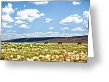 Arizona Desert Horses Greeting Card by Ryan Kelly