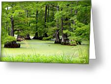 Arkansas Lake With Cypresses Greeting Card by Carol Groenen