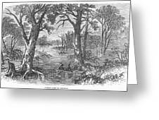 Arkansas: Sunken Lands Greeting Card by Granger