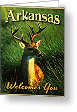 Arkansas White Tailed Deer Greeting Card by Flo Karp