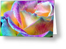 Artful Colorful Rose Greeting Card by Lorrie Morrison