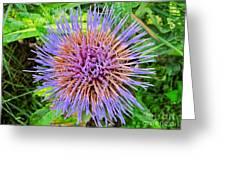 Artichoke Blossom Greeting Card by Sean Griffin