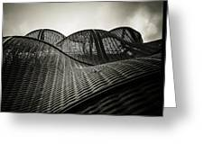 Artistic Curves Greeting Card by Lenny Carter