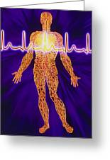 Artwork Of Human Venous System And Ecg Heart Trace Greeting Card by Mehau Kulyk