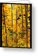 Aspen Family Greeting Card by Susanne Still