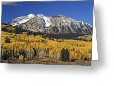 Aspen Trees In Autumn, Rocky Mountains Greeting Card by David Ponton