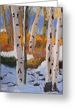 Aspens On Snowy Ground Greeting Card by Michele Turney