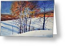 Aspin In The Snow Greeting Card by Donald Maier