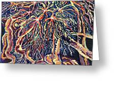 Astrocytes Microbiology Landscapes Series Greeting Card by Emily McLaughlin