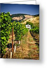 At Home On The Vineyard Greeting Card by Vicki Jauron