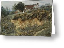 At Sandhills Witley Greeting Card by Helen Allingham