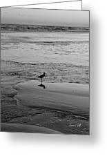 At Twilight In Black And White Greeting Card by Suzanne Gaff