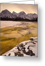 Athabasca River And Mt Fryatt, Jasper Greeting Card by Darwin Wiggett