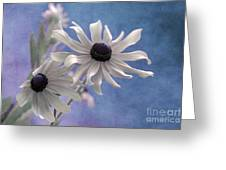 Attachement - S09at01 Greeting Card by Variance Collections