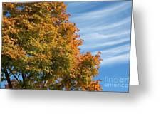 Autumn Anticipation Greeting Card by Carol Groenen