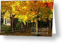 Autumn At Bayberry Cottage  Greeting Card by Nancy Patterson