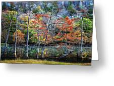 Autumn At Beaver's Bend Greeting Card by Tamyra Ayles