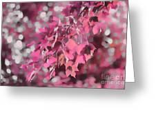 Autumn Blush Greeting Card by Jeff Breiman