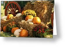 Autumn Bounty Greeting Card by Kathy Clark