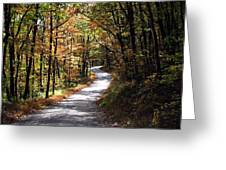 Autumn Country Lane Greeting Card by David Dehner