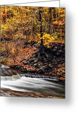Autumn Flow Greeting Card by Mark Papke