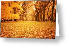 Autumn Foliage - Central Park - New York City Greeting Card by Vivienne Gucwa