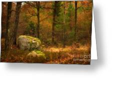 Autumn Forest Walk Greeting Card by Lutz Baar